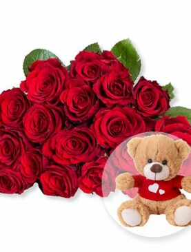 18 rote Fairtrade-Rosen und Love-Teddy