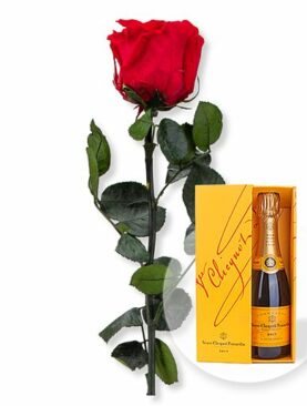 Rote Infinity-Rose und Champagner Veuve Clicquot
