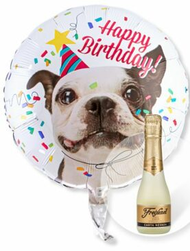 Ballon Happy Birthday Hund und Freixenet Semi Seco