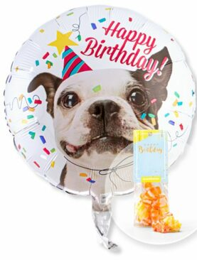 Ballon Happy Birthday Hund und Fruchtgummi Happy Birthday