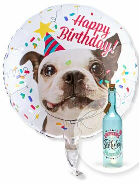 Ballon Happy Birthday Hund und Blaue Glasflasche Happy Birthday mit LED