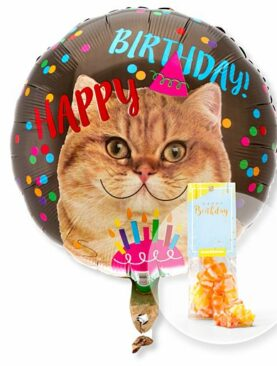 Ballon Happy Birthday Katze und Fruchtgummi Happy Birthday
